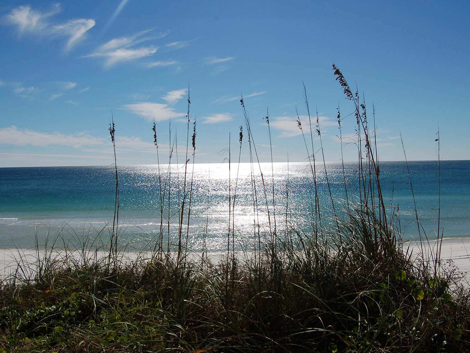 Condo Rental at Adagio on 30A